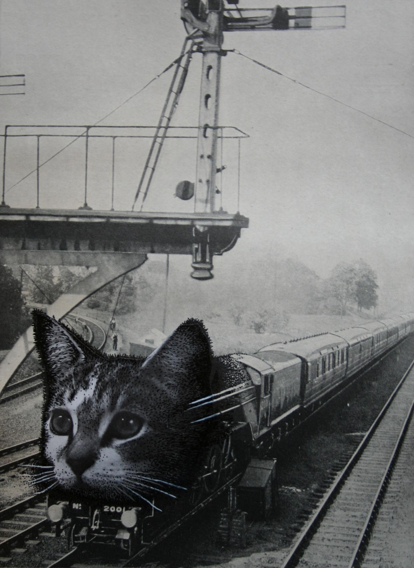 lola dupre cats 3.JPG