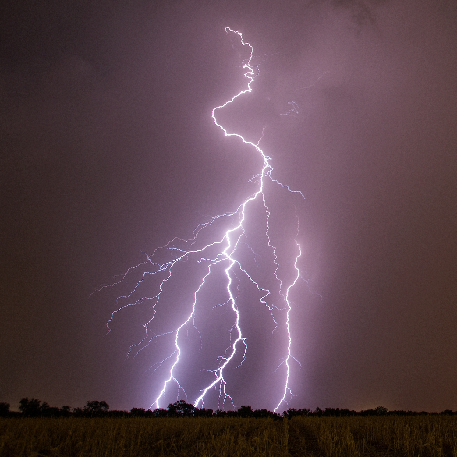 lightning-portrait-1-IG.jpg