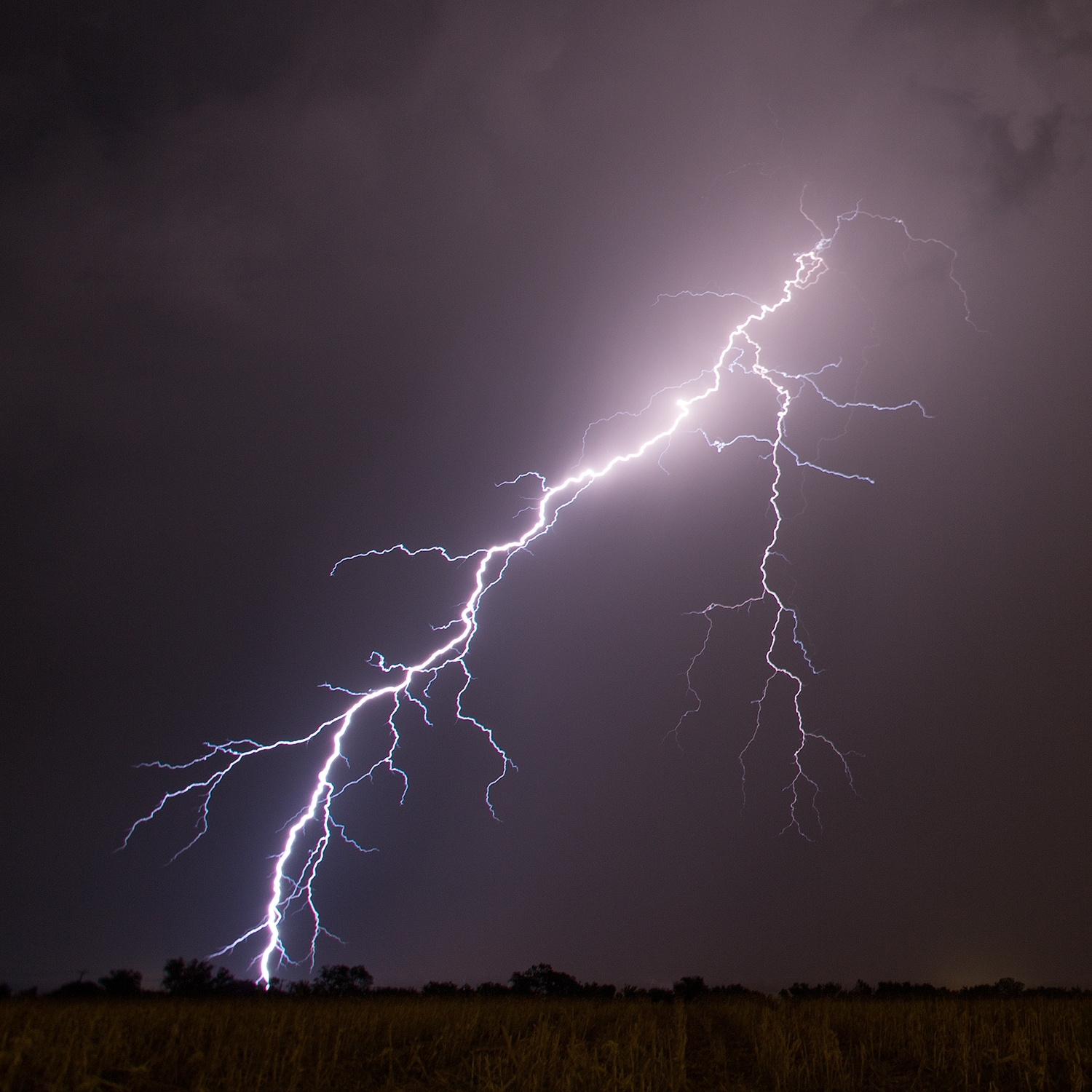 lightning-portrait-2-IG.jpg
