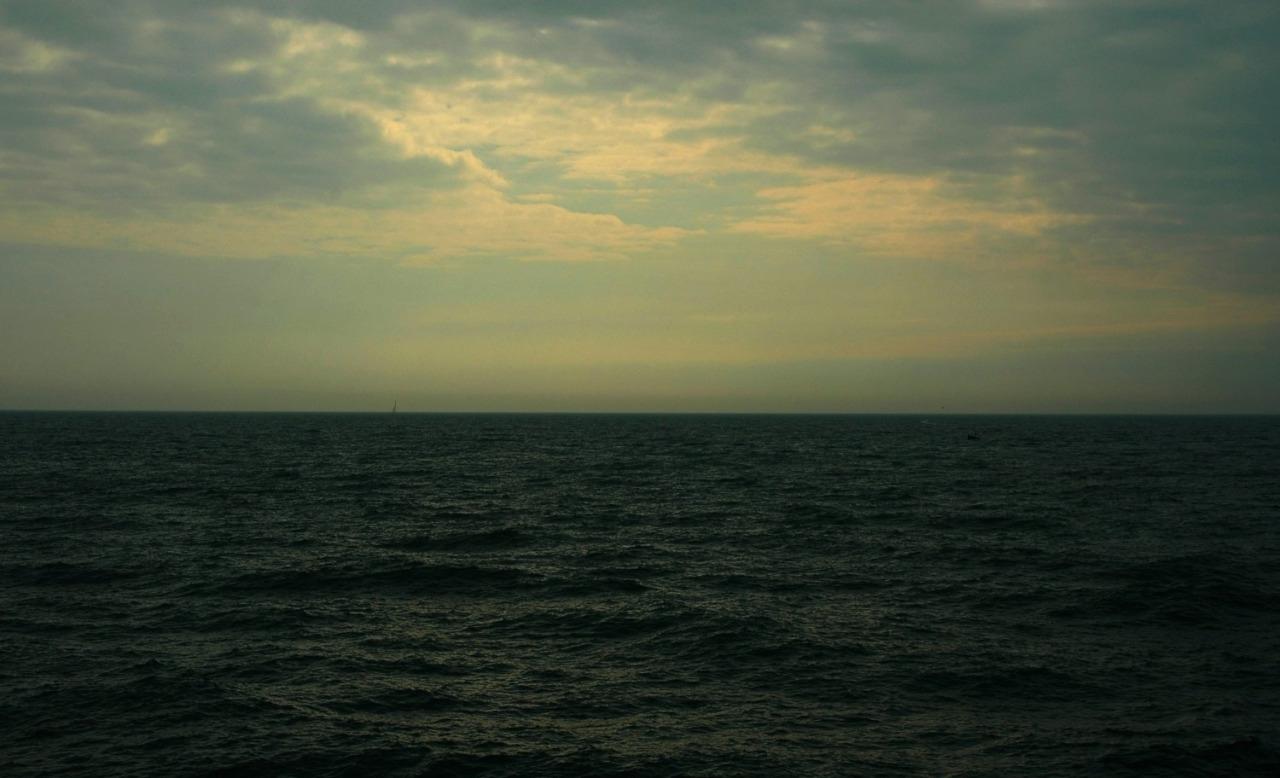SLOMAN SEA.jpg