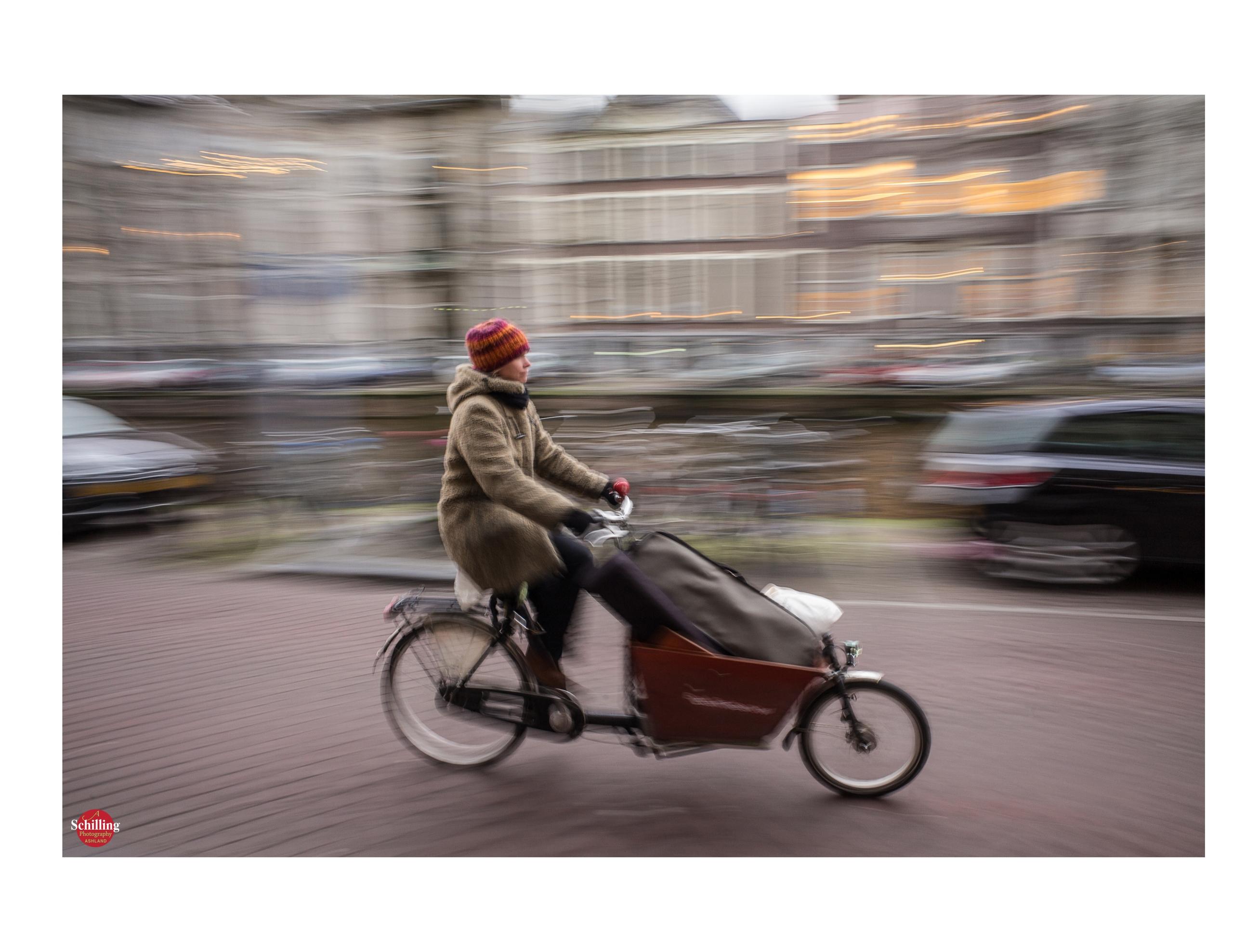 The Cargo Bike.jpg