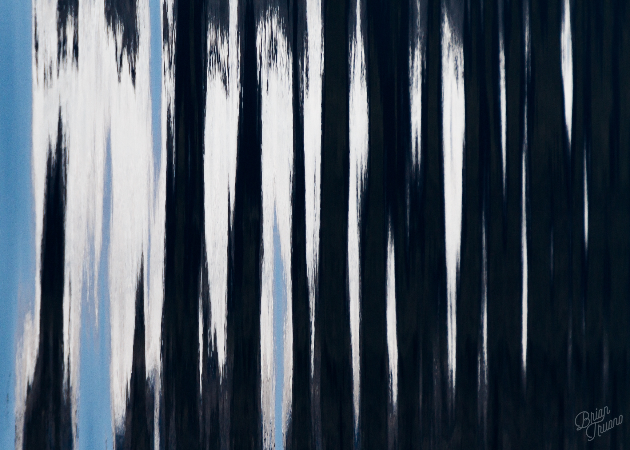 Evanescent_BTruono_fbgp.jpg