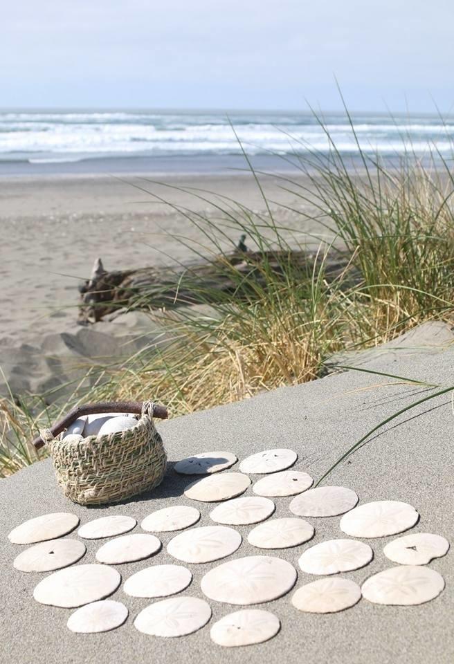 sanddollars and basket.jpg
