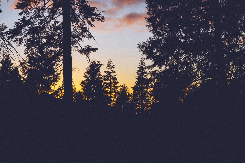 040116-Yosemite-2.jpg