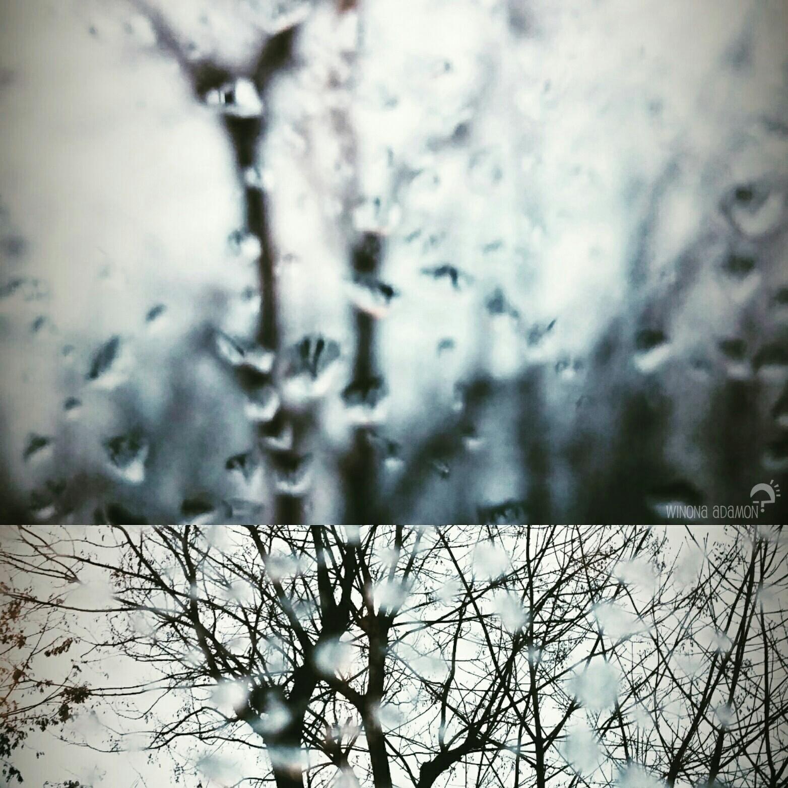 rainy 2.jpg