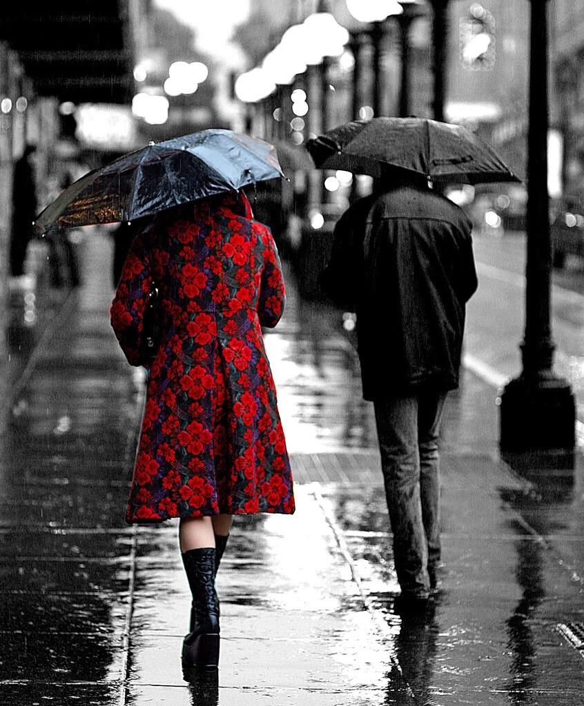 Glorious-Rain-by-Chirtopher-Michel.jpg