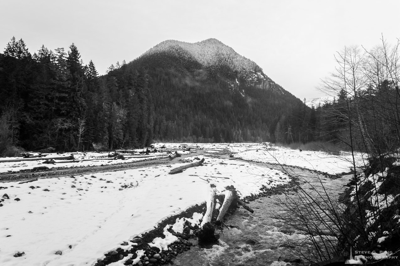 winter-snow-carbon-river-washington-2016.jpg
