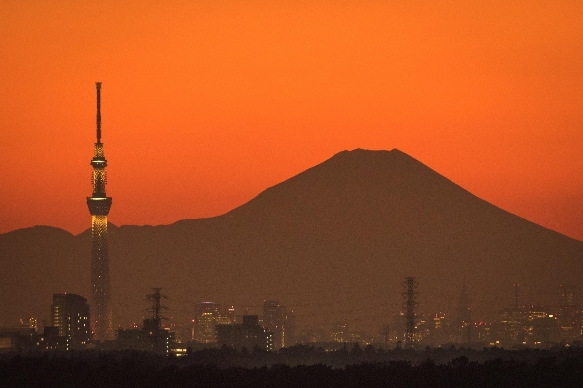 [287]「東京スカイツリー・自然」5089-1.jpg