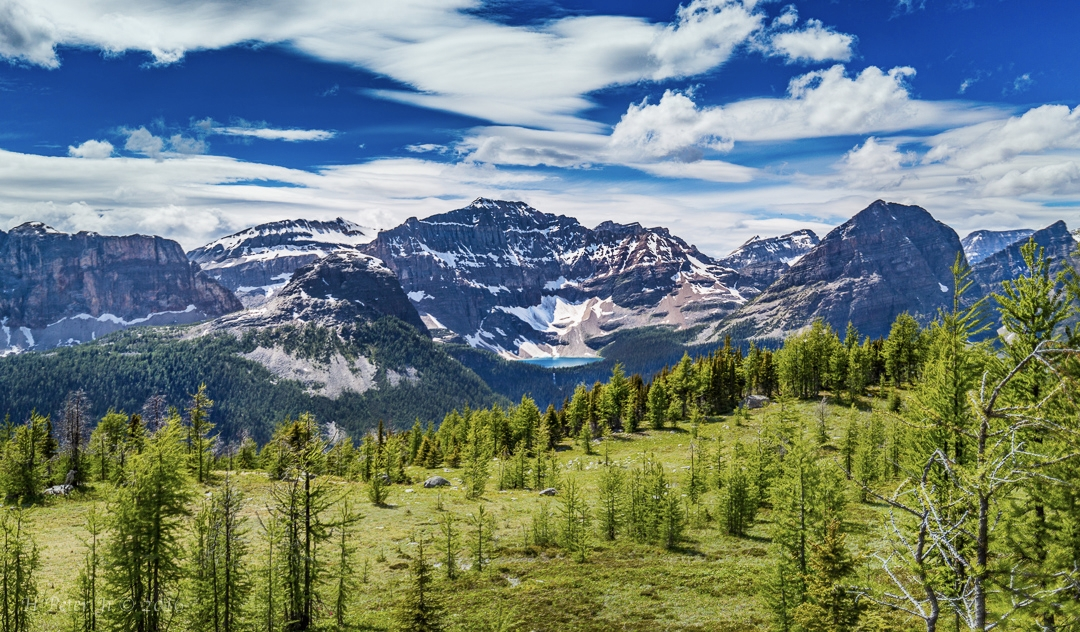 how to get from calgary to banff without a car